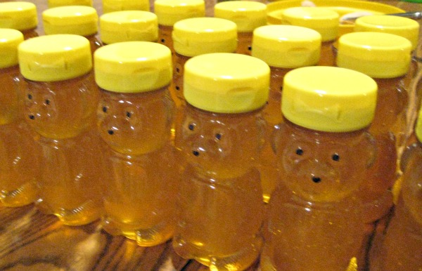 6 oz honey bear crop