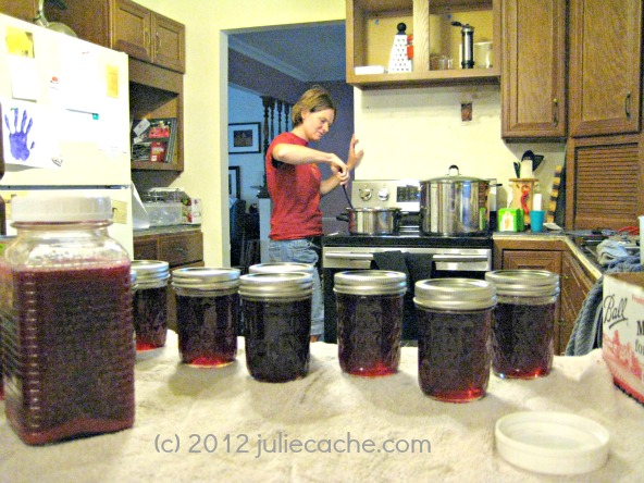 homemade jelly canning preserving juliecache