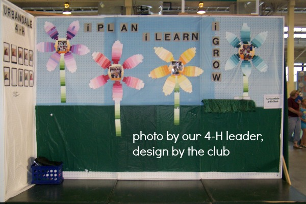 4-H Fair Booth Ideas